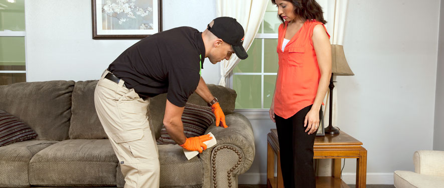 San Clemente, CA carpet upholstery cleaning
